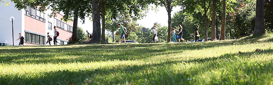 Sommer auf dem Campus.
