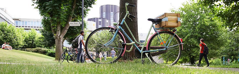 Beliebte Strecke für Fahrradfahrer: Der Broder-Carstensen-Weg verläuft zwischen dem Uni-Hauptgebäude und dem P-Gebäude.