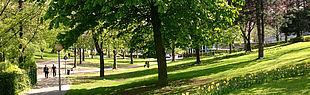 Das Bild zeigt den Uni Campus (Bild: Universität Paderborn)